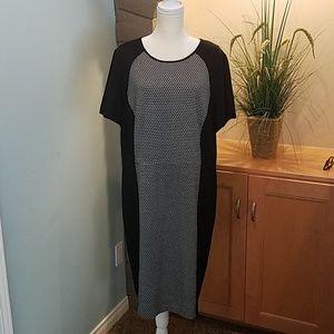 Vince Camuto Black & White Dress, Size 20W